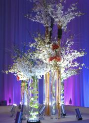 Special-Event-arrangement-21