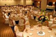 Special-Event-arrangement-29