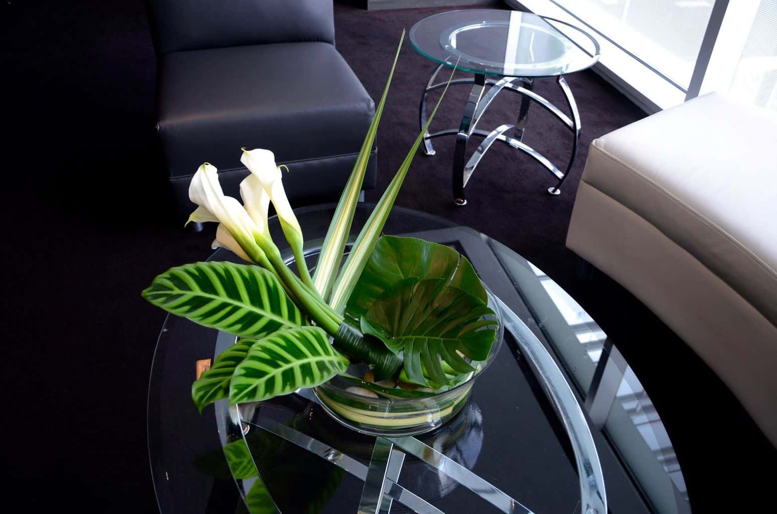White callas and tropical foliages in a dramatic coffee table arrangement