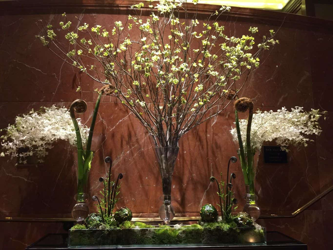 Dogwood, orchids and fern fiddleheads in a dramatic display